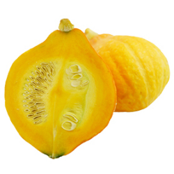コリンキー|わっさんの食いしん坊野菜