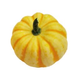 プッチーニ|わっさんの食いしん坊野菜