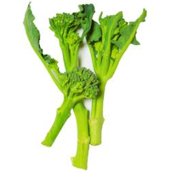 茎ブロッコリー|わっさんの食いしん坊野菜