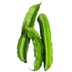 四角豆|わっさんの食いしん坊野菜