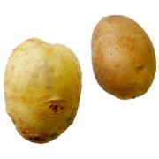 キタアカリ|わっさんの食いしん坊野菜
